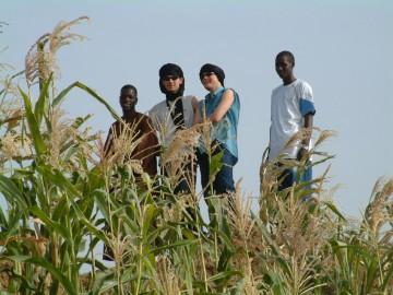 medium_élèves_français_mauritaniens.jpg