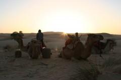 Mauritanie2005_ 349.jpg