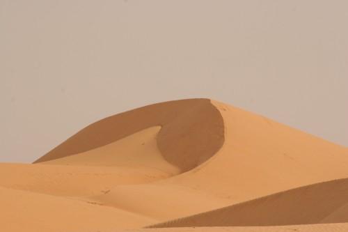 Mauritanie2005_ 151.jpg