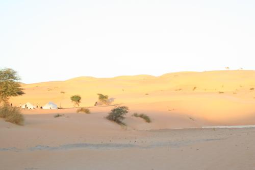 Mauritanie2005_ 443.jpg
