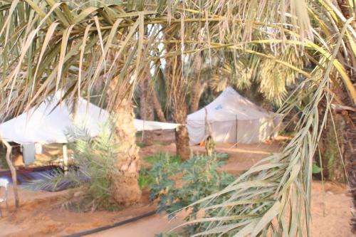Mauritanie2005_ 285.jpg