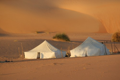 Mauritanie2005_ 440.jpg