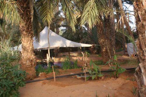 Mauritanie2005_ 287.jpg